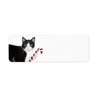 Black and white cat Christmas Return Address Label