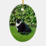 Black and White Cat Christmas Tree Ornaments