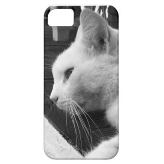 Black and white cat iPhone 5 case