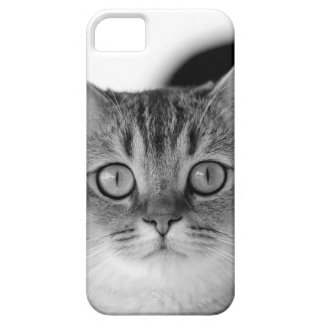 Black and white cat looking straight at you barely there iPhone 5 case