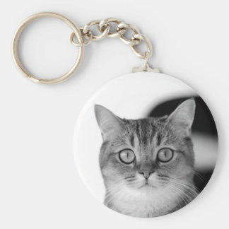 Black and white cat looking straight at you key ring