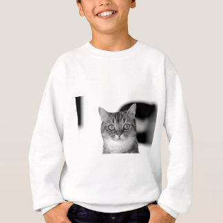 Black and white cat looking straight at you sweatshirt