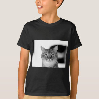 Black and white cat looking straight at you T-Shirt