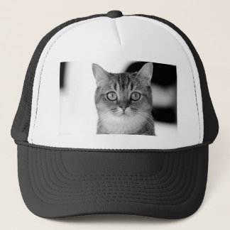 Black and white cat looking straight at you trucker hat