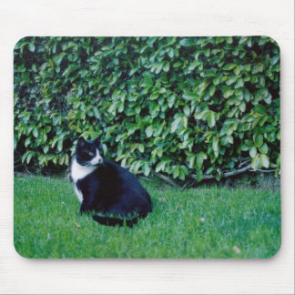 Black and White Cat Mouse Pad