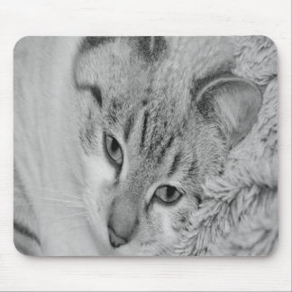 Black and White Cat Mousepad, Cat Mouse Pad
