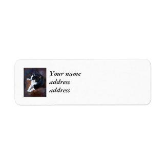Black and White Cat Portrait Return Address Label