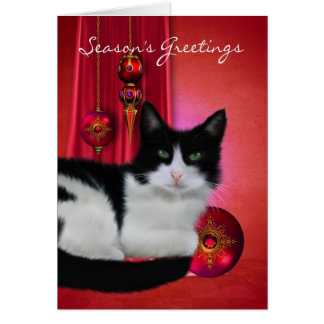 black and white cat season's greeting card with or