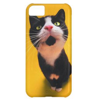 Black and white cat-tuxedo cat-pet kitten-pet cat iPhone 5C case
