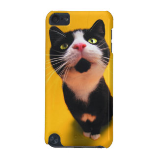 Black and white cat-tuxedo cat-pet kitten-pet cat iPod touch 5G cases