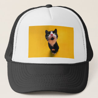 Black and white cat-tuxedo cat-pet kitten-pet cat trucker hat