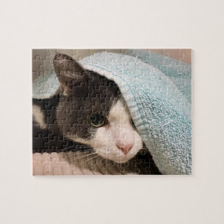 Black and white cat under towel puzzle