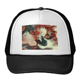 Black And White Cat With Digital Painting Effect Cap