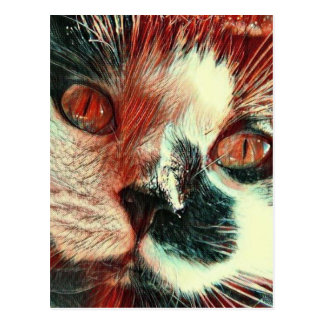 Black And White Cat With Digital Painting Effect Postcard