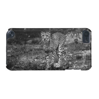 Black and White Cheetah Photograph, Animal iPod Touch (5th Generation) Covers