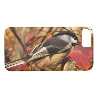 Black and White Chickadee Bird in Autumn iPhone 8/7 Case