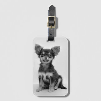 Black and White Chihuahua Puppy Photo Luggage Tag