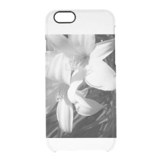 Black and White Clear iPhone 6/6S Case