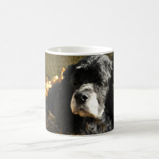 Black and White Cocker Spaniel Photo Coffee Mug