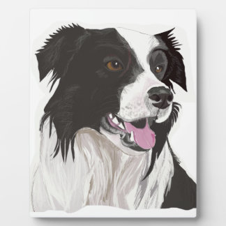 black and white collie brown eyes plaque