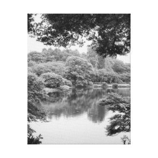 Black and white, cool, unique nature and lake canvas print