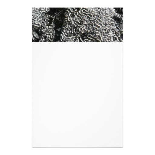 Black and White Coral Nature Stationery