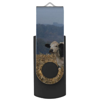 Black and White Cow grazes in freshly plowed field USB Flash Drive