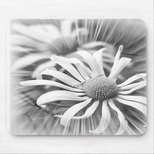 Black And White Daisies Mousepad