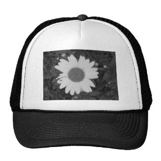 Black and White Daisy Trucker Hats