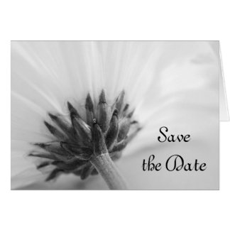 Black and White Daisy Wedding Save the Date Card