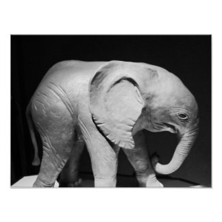 Black And White Elephant Photo Poster