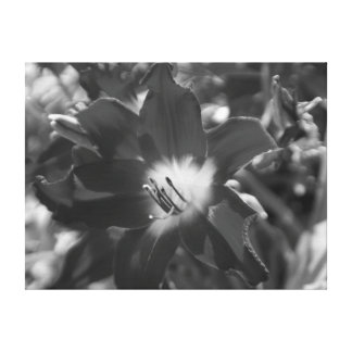 Black and white flower stretched canvas prints