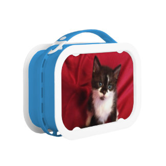 Black and white Foofy the kitten Lunch Box
