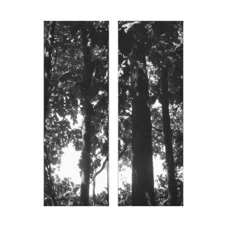 Black and White Forest Gallery Wrap Canvas