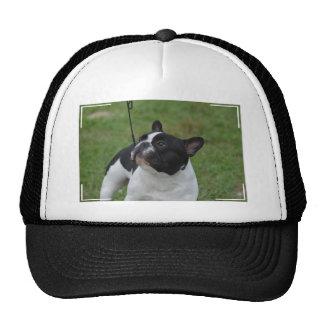 Black and White French Bulldog Cap