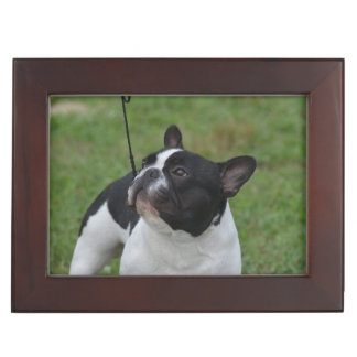Black and White French Bulldog Keepsake Box