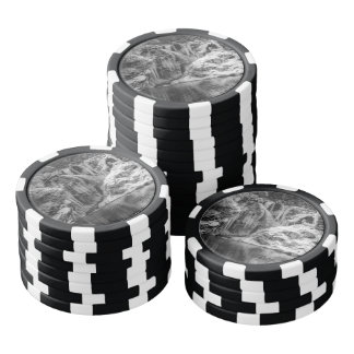 Black and White Frozen Bled Gorge Waterfall Poker Chips