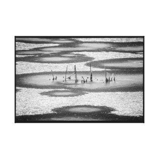 Black and White Frozen Broken Marsh Grass in Water Canvas Print