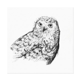 Black and white hand drawn owl stretched canvas print