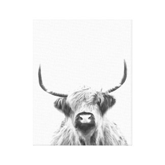 Black and White Highland Cow Canvas Print
