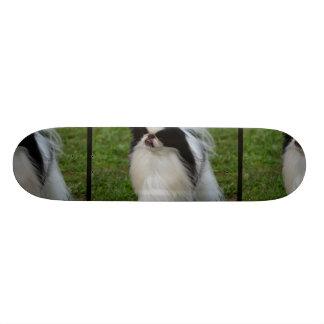 Black and White Japanese Chin Skate Board Decks