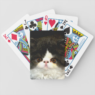 Black and White Kitten Bicycle Playing Cards