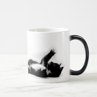 Black and white kitten on colour changing mug