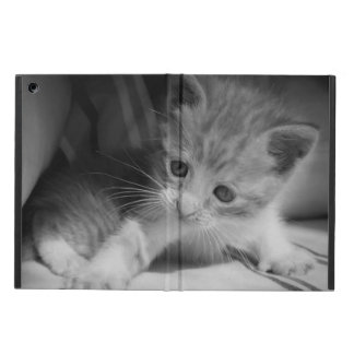 Black and White Kitten Photograph iPad Air Cases