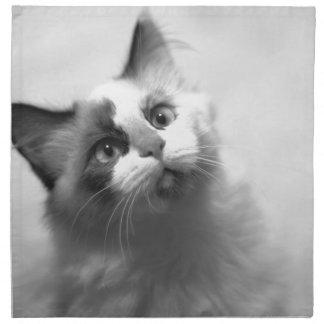 Black And White Kitten Portrait Napkin