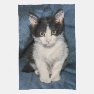 black and white kitten towel