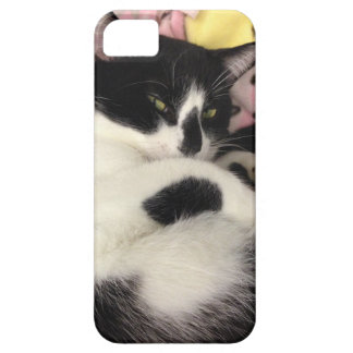 Black and White Kitty Cat iPhone 5 Cases