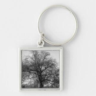 Black and White Landscape Photo Key Chain