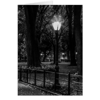 Black and White Landscape Photo of Central Park Greeting Card