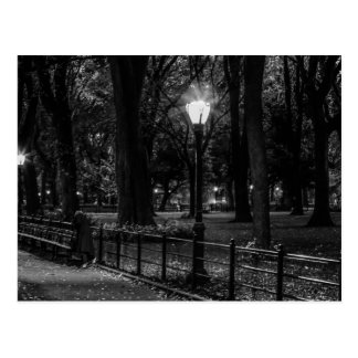 Black and White Landscape Photo of Central Park Postcard